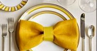 How to make a Bow Tie Napkin Fold and 20 other napkin styles! Great tablescape ideas!