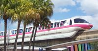 Monorail PINK (with service to Epcot, and usually with excellent, Dwight-eque drivers)