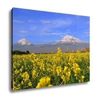 GP Canvas Large And Small Ararat In Armenia 16x20 $124.95