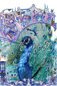 "New Sketch Peacock 8x10"" High Quality art print by Alex Dakos 2018 $15.00"