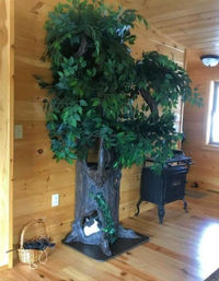 Real Looking Cat Tree