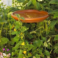 A large terra-cotta saucer sits atop a tomato cage serving double-duty as a birdbath and trellis for climbing vines. To create an even more vibrant focal point, paint the saucer in your favorite color, or tie it into your garden's color scheme.