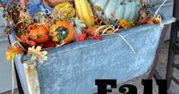 Pumpkins and gourds make everything look festive for fall. #falldecor