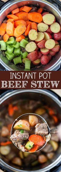 Beef Stew is the ultimate cold weather comfort food and the Instant Pot let's you have a delicious homemade beef stew in less than an hour. This Instant Pot Bee
