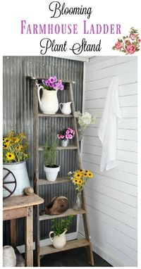 a rustic old ladder makes such a charming plant stand - especially when a few pieces of vintage decor are display among the plants and flowers.