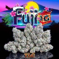 Jungle boys seeds and weeds are presenting as top brands in Cannabis Industry. You can by these product online from our jungle boys dispensary.