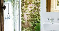 So obsessed with this cottage like atmosphere.... kiyoaki: (vía Marnie Skillings Sydney cottage gallery 7 of 10 - Homelife)