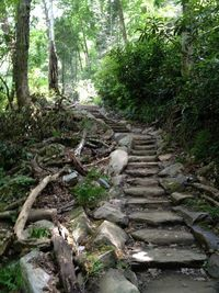 Chimney Tops Trail, Great Smoky Mountains, Tennessee 4 mile trail . . .