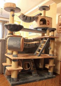 cat houses, cat trees and tree houses.