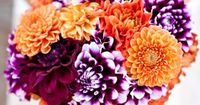 Purple and Orange Wedding Inspiration. Nouquet by Sadas Flowers, photo by Figlewicz Photography » KnotsVilla