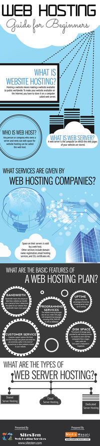 Web Hosting Guide For Beginners [Info Graphic]