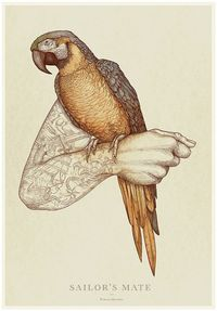 Birds of a feather on Behance