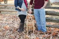 www.stephiephoto.com - Family Photography - maternity photography
