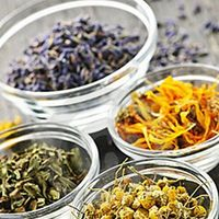 Savvy Herbs and Teas