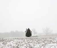 Tree and House (West Hungary, 2011) TAMAS DEZSO PHOTOGRAPHER - HERE, ANYWHERE (2009 - ongoing)