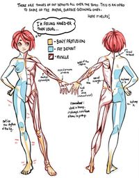 Tutorial Anatomy: Muscle, Fat, and Bone 1 by rinayun �˜… || CHARACTER DESIGN REFERENCES (https://www.facebook.com/CharacterDesignReferences & https://www.pinterest.com/characterdesigh) �€� Love Character Design? Join the Chara...