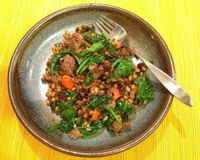 Rich ground lamb studded with sweet fried onions and peppers, raisins, rosemary and chewy spelt makes an easy one-skillet supper   Shockingly Delicious