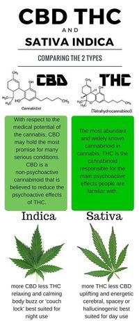 CBD or THC? Learn the difference