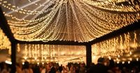 Beautiful! outdoor canopy of lights..... will look great with a farm house or barn on a warm summer or spring night or even in that chilly winter night to warm that night right up with the feel of the dim glowing twinkle decorative lights. Add a mug of ho...