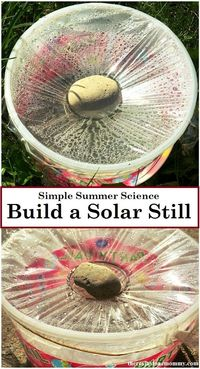 Summer is the perfect time for some simple science experiments using the sun. Making a solar still is simple and doubles as a survival skill.