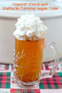 A crock pot version of Starbcuks Caramel Apple Cider. It tastes just like you bought it at the store. Individual sized portion recipe included.