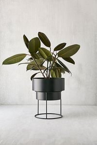 "Noa 8"" Metal Planter + Stand"