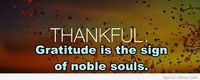 Cover thankful with quote