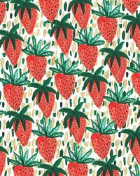 Strawberries III. #pattern #illustration Check out the website, some girl tried a new diet and tracked her results