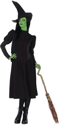 Elphaba Witch Adult Costume Large $63.91 https://costumecauldron.com