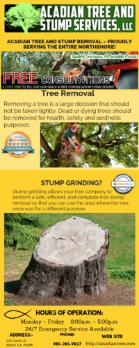 Waveland Tree Removal - Acadian Tree Removal and Stump Services,LLC.png