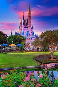 Walt Disney World, Florida - Earth Pics