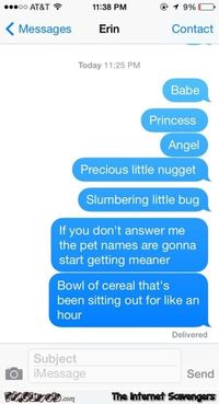 Pet names will get meaner funny text