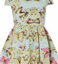 Dorothy Perkins Womens Izabel London Light Blue Butterfly Dress- Light blue floral butterfly print dress. Round neckline. Cap sleeves. Zip fastening. Length 83cm. 100% Polyester. Cold hand wash. Do not dry clean. http://www.comparestoreprices.co.uk/wo...