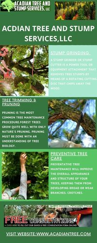 Acadian Tree Removal and Stump Services, LLC are providing Tree Removal & Stump Removal Services in Mandeville. Tree Removal Mandeville-based firm for the removal of these kinds of trees from their lawn or backyard. Mandeville tree removal firm which ...