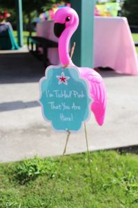 CrowningDetails's Birthday / Flamingos - Photo Gallery at Catch My Party