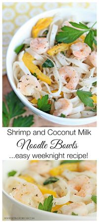Here is a quick and tasty recipe for Shrimp and Coconut Milk Noodle Bowls made in one pan for quick cleanup! Sharing this and 50 easy weeknight meals!