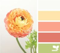 If I can't find mint accents, I like the green in this yellow and coral color scheme.