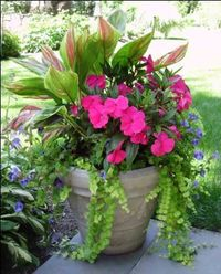 A fantastic way to add curb-appeal and enjoyment to your home is to freshen up your front porch and give it a facelift. A front porch is one of the first things