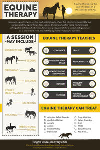 What is Equine Therapy?