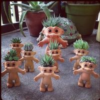 Trolls get spiked! ... succulent in head planter Bahahaha my mom will die! She has a thing for trolls lol