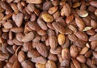 Superfood: Almonds