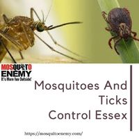 Mosquito Enemy is expertise in controlling mosquitoes and ticks in Essex. Our unique spray services kill mosquitoes and ticks in just a few minutes. For affordable mosquito and tick control protection call Mosquito enemy at (978)363-2222.visit us ...