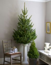 Christmas tree base ~ Holiday...with Matthew Mead