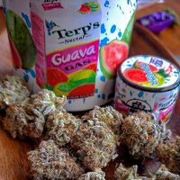 #BUYPACKPACKBOYZONLINE | #JUNGLEBOYSWEEDFORSALE | #BUYWEEDONLINE https://canna-center.com/buy-weed-online-with-paypal/| #BUYWEEDWITHPAYPAL #BACKPACKBOYZWEED | #BUYMARIJUANAONLINE | BUY WEED ONLINE WITH PAYPAL | WEED FOR SALE WITH PAYPAL | ORDER WEED ON...