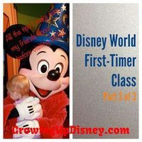 Love these tips on traveling to Walt Disney World with children! Great series to help prepare for your first Disney vacation.
