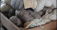Some of our natural colored wool.