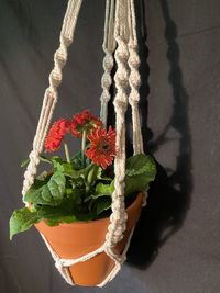 Macrame Plant Holder Hand Made Cotton $16.5