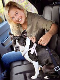 "Traveling with your dog can be great fun�€""for both you and Fido�€""when you follow some essential travel and road rules."
