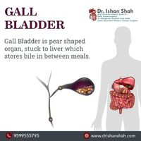 Dr. Ishan Shah is the best Gallbladder Cancer Treatment in Ahmedabad, Gujarat, Rajasthan, Madhya Pradesh. Get help from medical experts to select the best gallbladder stone treatment doctor near you in Navrangpura, Ahmedabad. Searching for the list of bes...