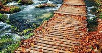 Autumn in Plitvice Lakes, National Park, Croatia share moments